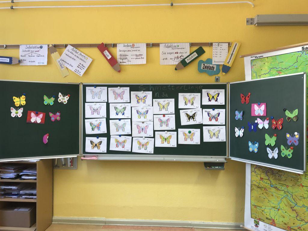 Die Schmetterlinge von Tangermünde